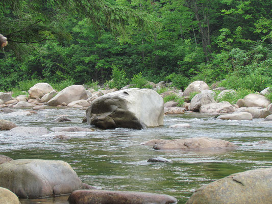 am Swift River