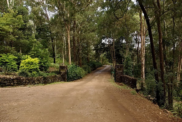 Avatar's Abode - Meher Road entrance