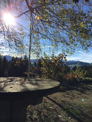Herbst Gartensitzplatz Osten