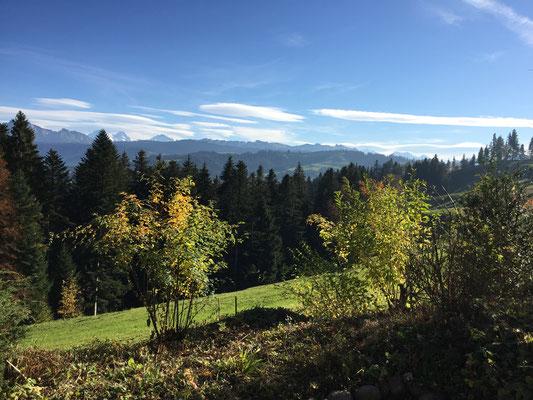 Herbst Süden