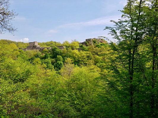 weiterer Blick zur Schmidtburg