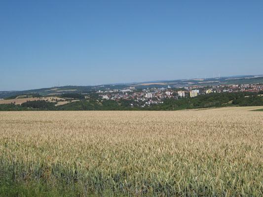 Blick von der Gieshügler Höhe Richtung Würzburg