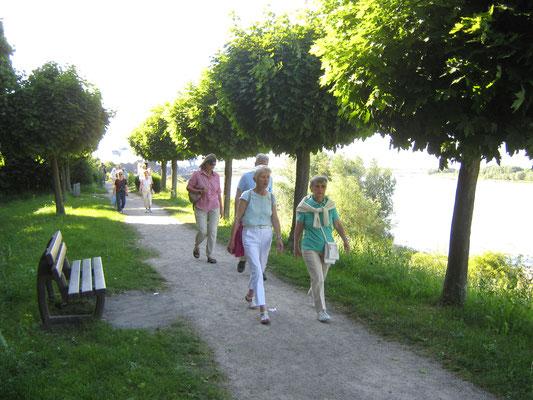 am Rheinufer bei Orsoy