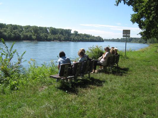 Päuschen am Rheinufer bei Altrip