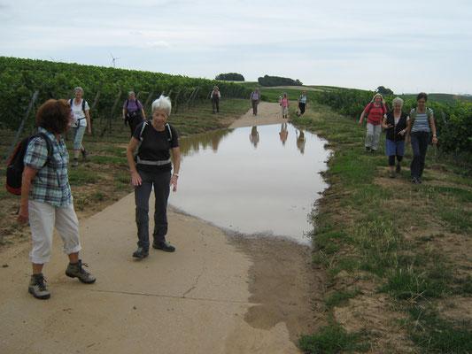 An dieser Stelle am Kneipp-Napoleon-Weg hatte sich das Wasser gesammelt, übrigens die einzige nasse Stelle  des Tages.