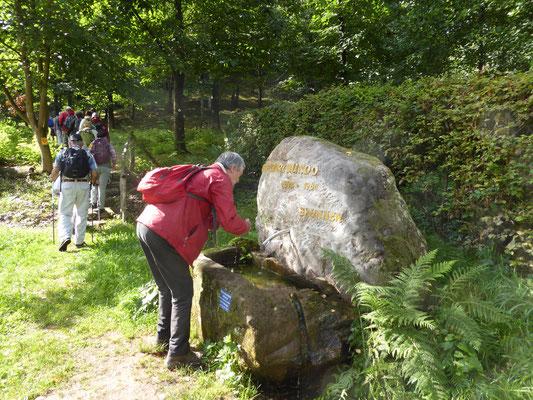 Am Biundo-Brunnen zu Ehren des Annweiler Stadtchronisten