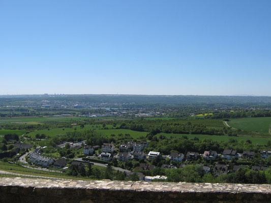 Blick über Frauenstein zum Rhein