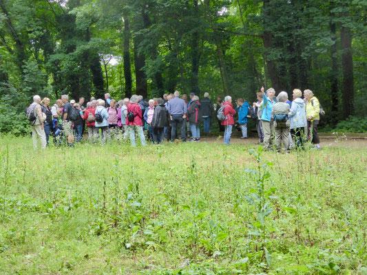 Unsere große Gruppe im Stadtwald