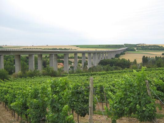 Rückblick über die Weinberge zur Selztalbrücke.