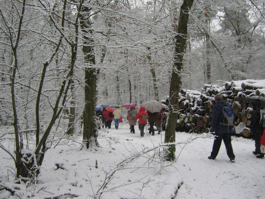 Unterwegs im verschneiten Stadtwald