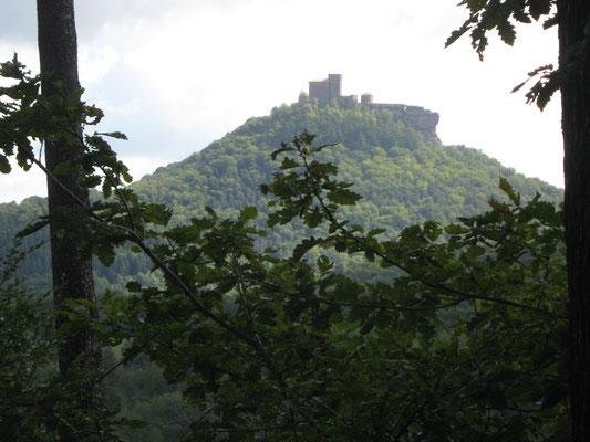 Blick auf den Trifels