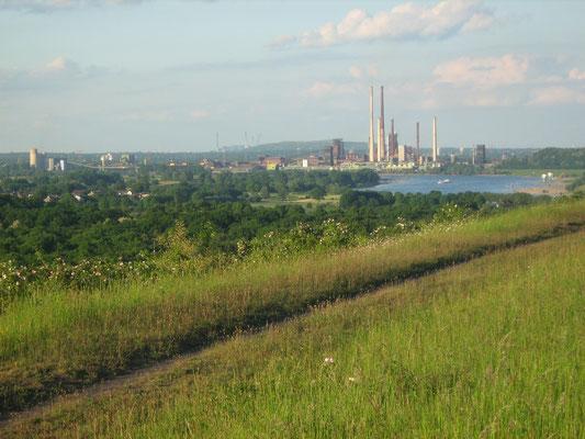 Blick über den Duisburger Rheinbogen zu den Thyssen-Werken