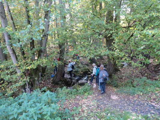 auf Steinen überqueren wir den Schächerbach