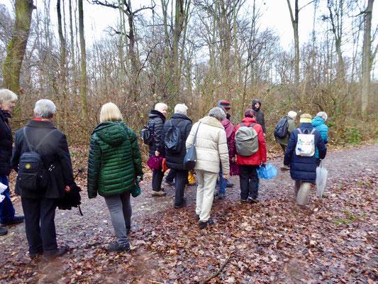 Weiter streben wir unserem Ziel in Schwanheim entgegen. Der Regen hörte zwischenzeitlich weitgehend auf.
