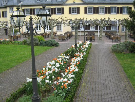 Blumenrabatte vor Jagdschloss Niederwald
