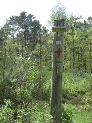 Schild und Farbmarkierungen weisen uns den Weg, Leistungen, die die PWV-Wegewarte ehrenamtlich in ihrer Freizeit erbringen