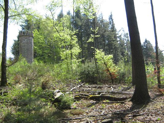 am Schänzelturm, der mittlerweile recht bescheiden zwischen den umstehenden Bäumen wirkt. Er wird von der PWV-Ortsgruppe Edenkoben instand gehalten.