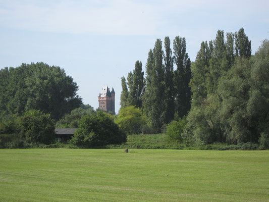 Blick über die Maulbeeraue zum Wormser Nibelungenturm
