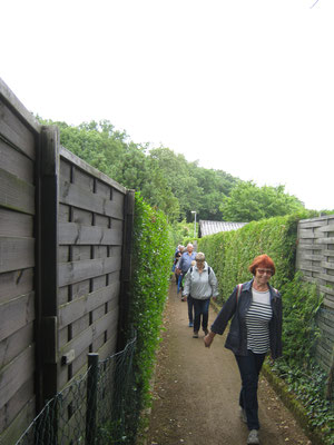 durch diese hohle Gasse in der Neu-Isenburger Kleingartenanlage Eichenbühl geht es zur Schlussrast