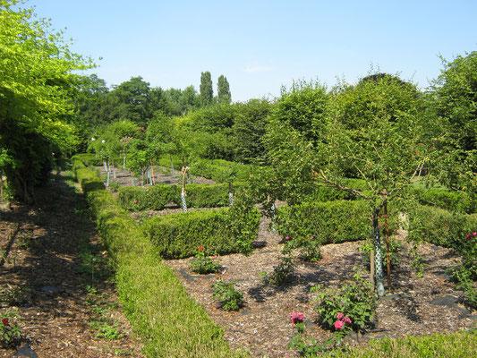 Das historische Rosengärtchen, das vom Verband der Kleingärtner restauriert wurde.