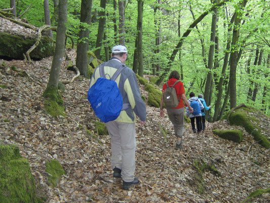Abstieg am Morschenberg