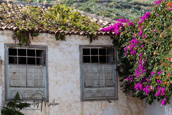 House in Icod de Los Vinos