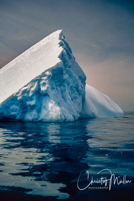 Most of the icebergs seen in the waters around Newfoundland come from glaciers of western Greenland. The sizes of Icebergs can achieve the size of big houses.
