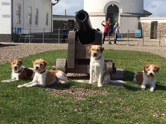 Besuch beim Leuchtturm von Hirtshals