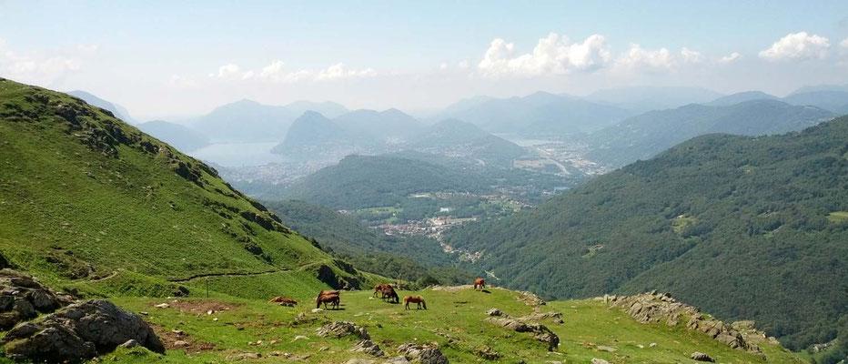 Panoramica  sul luganese