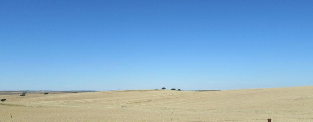 Ruta Iberica - foto 3, 60 x 23,5 cm, foto op Dibond