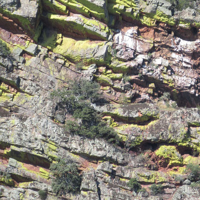Ruta Iberica - foto 9, 30 x 30 cm. foto op Dibond