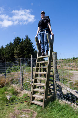 the highest stile (many others will follow)