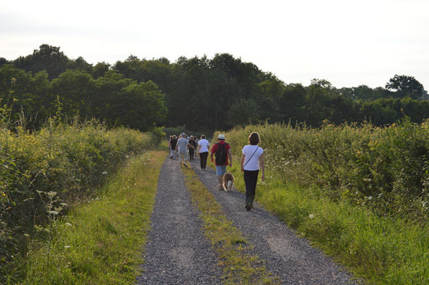 """Dim 12 : randonnées à CURDIN """"Vouivre en chemins"""" / à VIRY """"Marche gourmande"""""""