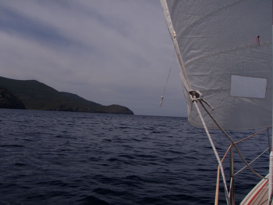 ...never mind...when having passed Cap Corse, there's enough winds to go downwinds only with the Genoa