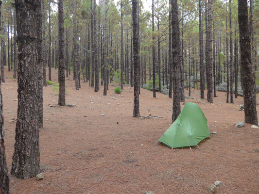 Camping in the forest in the middle of the island on 1600m