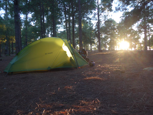 Camping in the forest on the western side of the island....