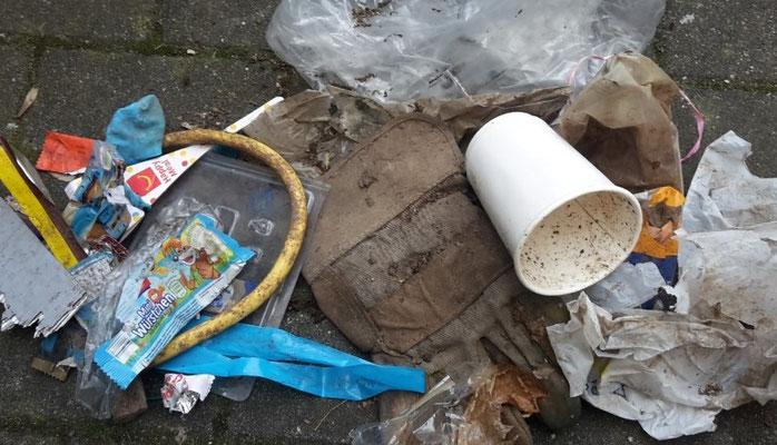 Mutter Erde Müll Waldspaziergang