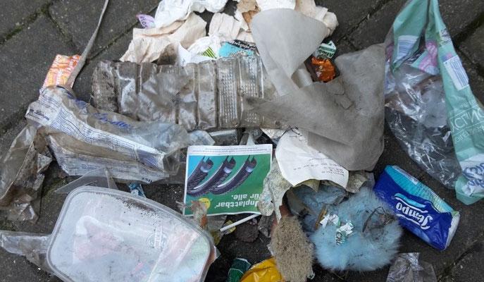 Mutter Erde Umweltverschmutzung