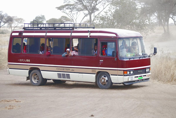 The bus during the animal observation in the park.