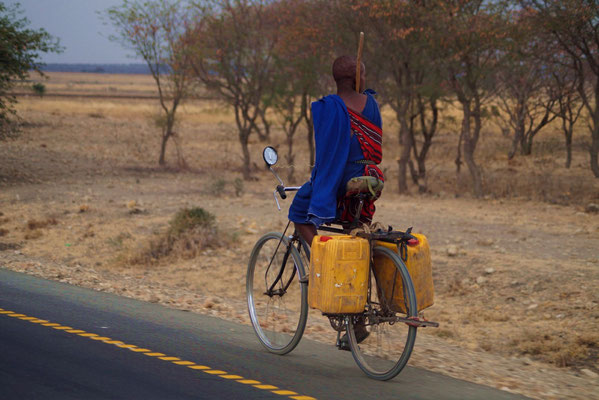 Water-transporting Massai on the road from Tarangire National Park to Arusha.