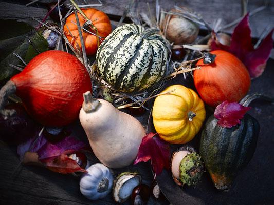 """Foto des Monats """"September/Oktober"""""""