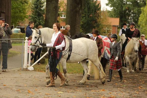 Kilnacasan Roderick bei der Celler Hengstparade (C) Schwöbel