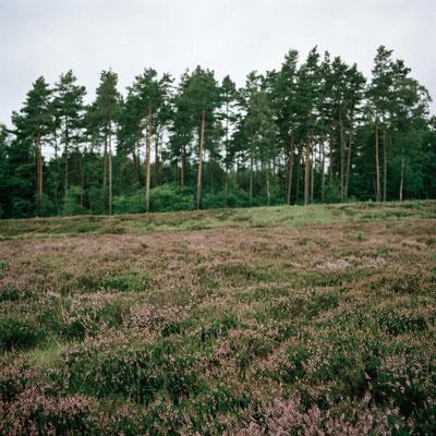 Bergen Belsen - Standort Krematorium