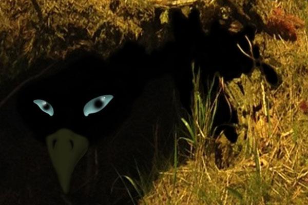 Seltsamer Vogel / Strange Bird