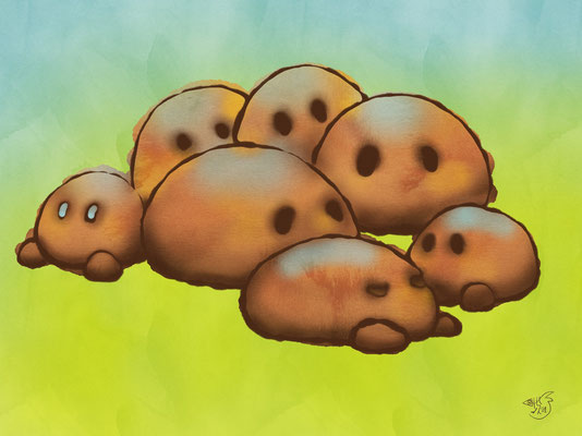 7 Kartoffeln