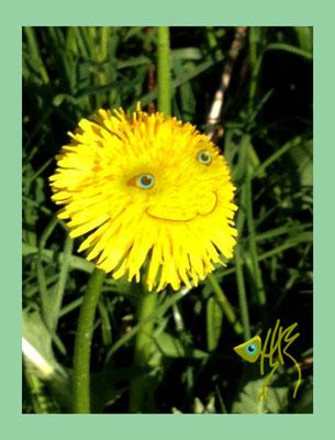 bloem 5