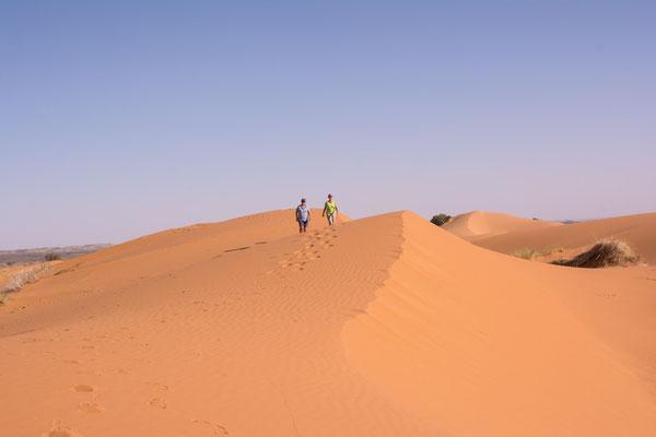 Wüstentour - Erg Chebbi
