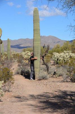 Im Saguaro NP