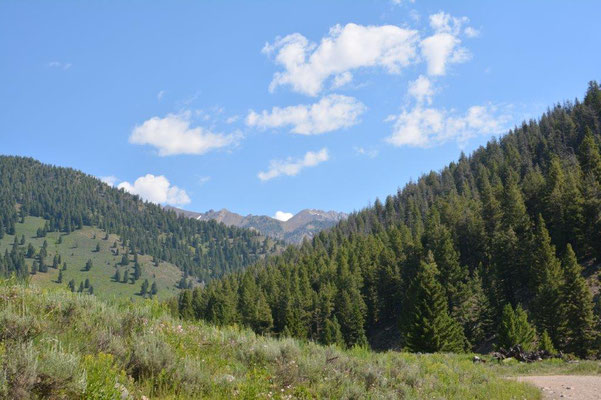 Sawtooth National Forest bei Ketchum