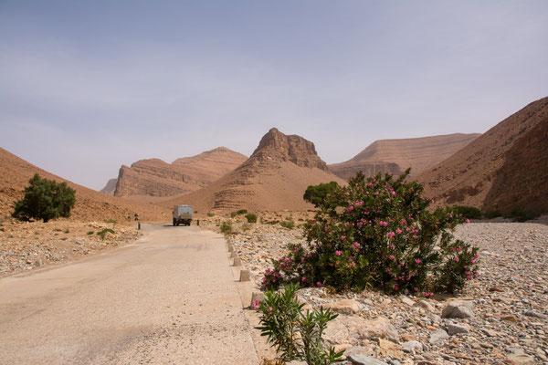 Tolle Landschaft auf dem Weg nach Tafraoute